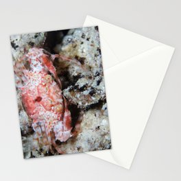 Red orang-eyed crab Stationery Cards