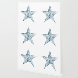 Frosted Star Wallpaper