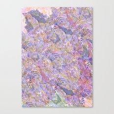 cosmology Canvas Print