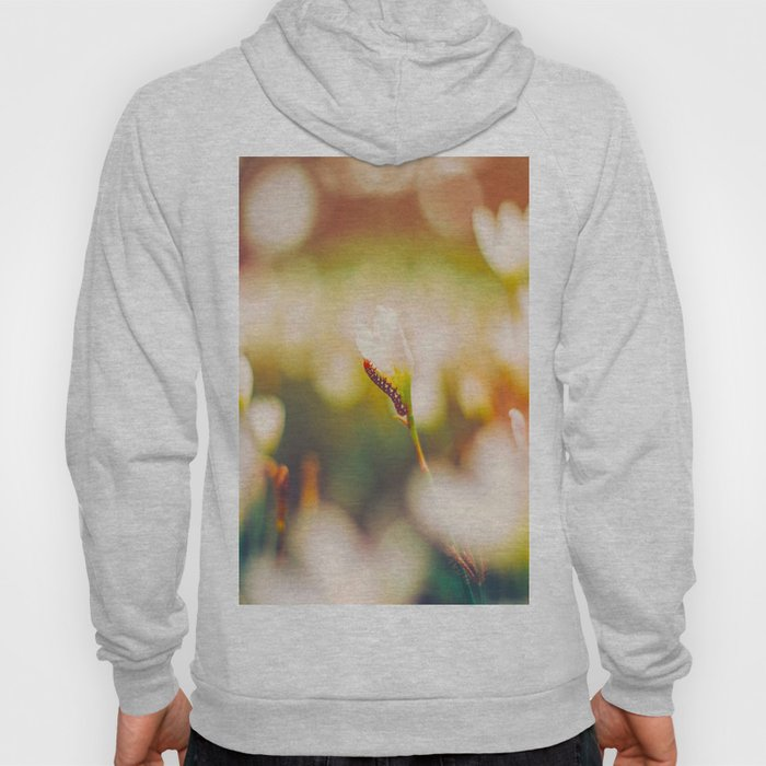 Many White Tulips In Colorful Blurry Sunlight Background Hoody