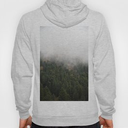 Foggy Trees Hoody