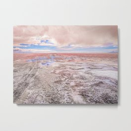 A Pinch Of Salt Metal Print