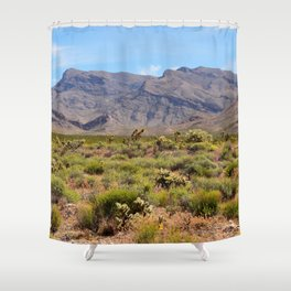 Painted Desert - I Shower Curtain