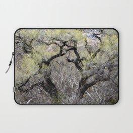 Cottonwood in Spring Laptop Sleeve