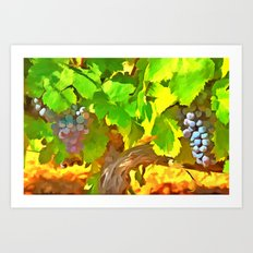 Bunches of Grapes Art Print