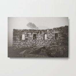 Secret Walls Metal Print