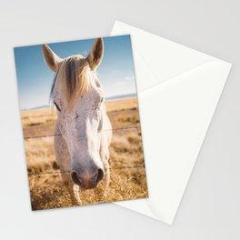 West Texas Wild III Stationery Cards