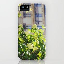 Promenade Plantée iPhone Case