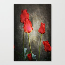 tulipes rouges Canvas Print