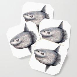 Ocean Sunfish (Mola mola) Coaster