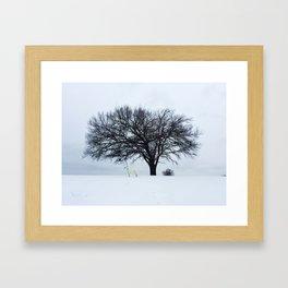 Koga 2 Framed Art Print