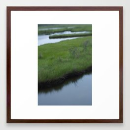 Cattus Island Framed Art Print