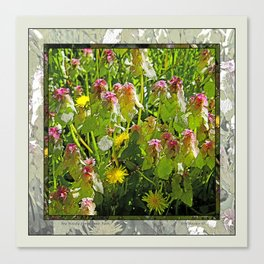 MY WEEDY SPRINGTIME PATH Canvas Print