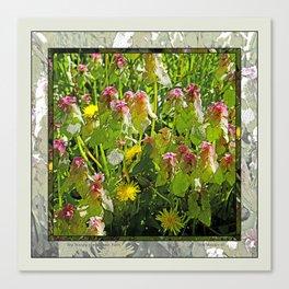 MY WEEDY SPRINGTIME PATH Canvas Print