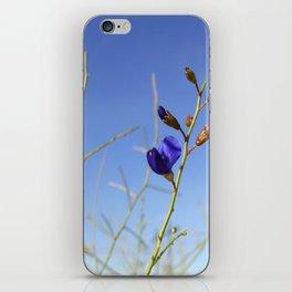 Violet Desert iPhone Skin