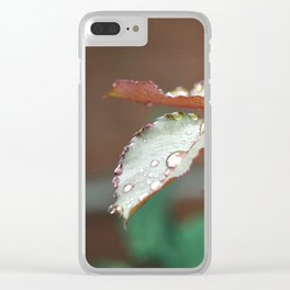 freshness Clear iPhone Case