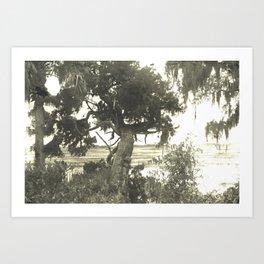Marsh Landscape Art Print