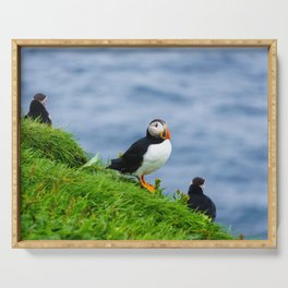 The Puffins of Mykines in the Faroe Islands V Serving Tray