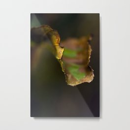 LEAVES OFSOUTH Metal Print