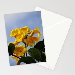 real yellow blossom Stationery Cards