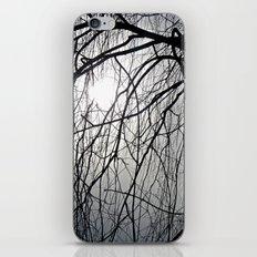 Nightmare iPhone & iPod Skin