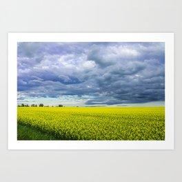 Yellow Fields of Happiness Art Print