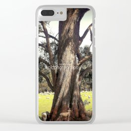 Under the shade of a Coolabah Tree Clear iPhone Case