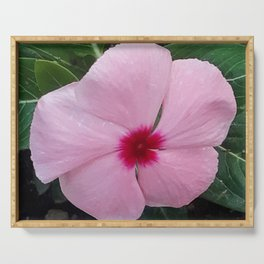 Simplicity in a Pink Flower Serving Tray
