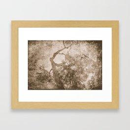 Vintage delicate tree pattern Framed Art Print