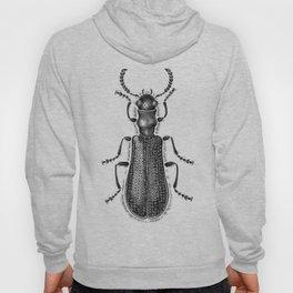 Beetle 04 Hoody