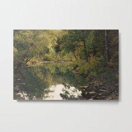 In the Woods 3 Metal Print