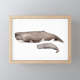 Sperm whale Framed Mini Art Print