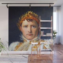Francois Gerard Coronation of Napoleon Wall Mural