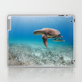 Swimming With Dinosaurs Laptop & iPad Skin
