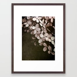 hydrangea too Framed Art Print