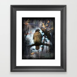 A Hawks Dream Framed Art Print