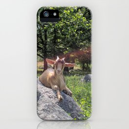 Sunshine and Goats iPhone Case