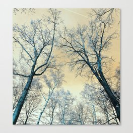 Trees nature infrared landscape Canvas Print