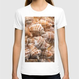 Seashells collection background T-shirt
