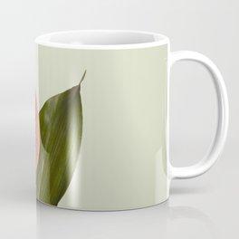 Indoor flower Coffee Mug