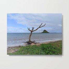 Hawaii scenery - Chinaman's Hat kualoa beach shore erosion - photography Metal Print