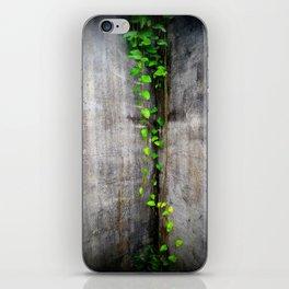 Green Climbing Vine, Bocas Del Toro iPhone Skin