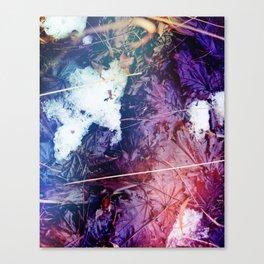 Snowy Leaves Canvas Print