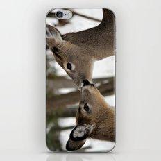 Chevreuil 001 iPhone & iPod Skin