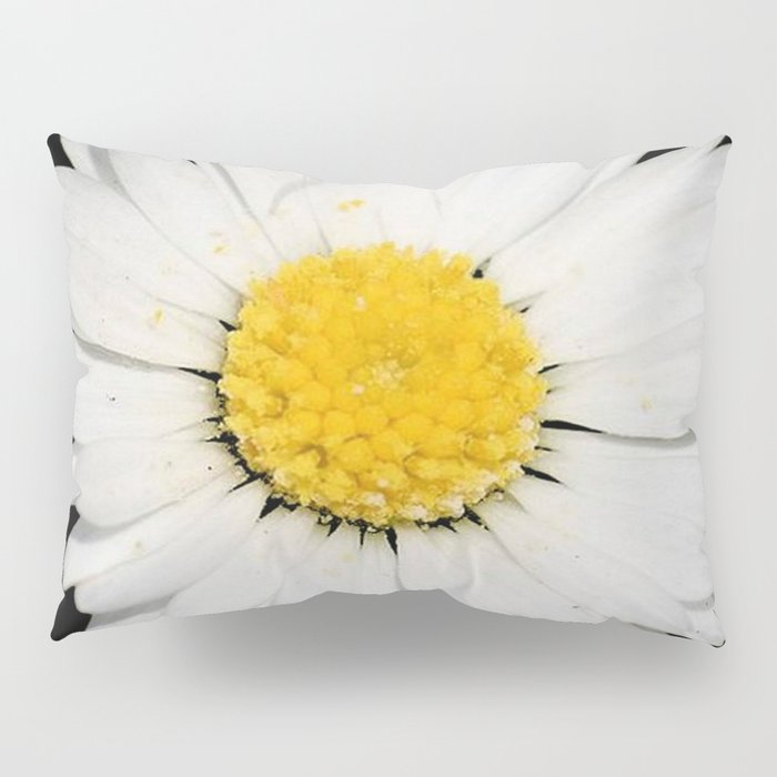 Nine Common Daisies Isolated on A Black Backgound Pillow Sham