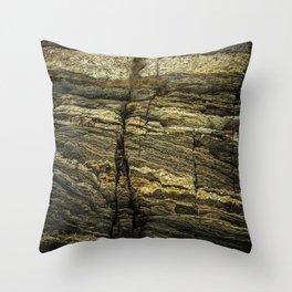 stone texture as background Throw Pillow