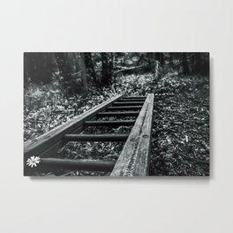 Wood Stains Metal Print