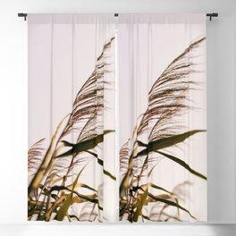 August Breeze #1 Blackout Curtain