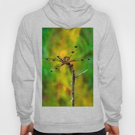 Gold Heart Dragonfly ~ Ginkelmier Inspired Hoody