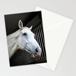 horse by Michal GADEK Stationery Cards